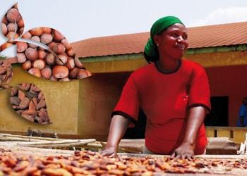 Ferrero představuje svou třetí Zprávu o společenské odpovědnosti firmy (CSR)