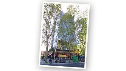 1990<br />La sede de Ferrero Ibérica se traslada a avenida Diagonal, 593 en Barcelona.