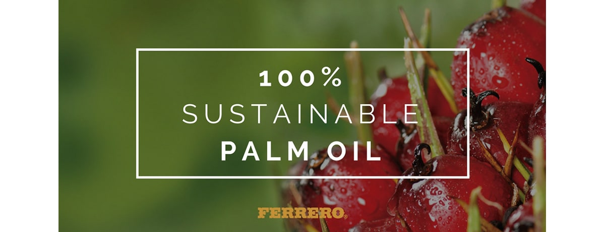 100% Sustainable Palm Oil