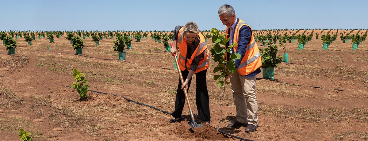FERRERO AUSTRALIA BOOSTING AUSTRALIA'S HAZELNUT INDUSTRY