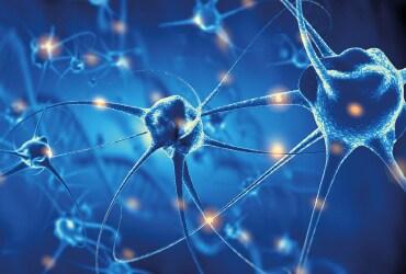 Innovazioni neurotecnologiche nella terapia delle lesioni del midollo spinale