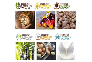 Catene di fornitura sostenibili con Ferrero Farming Values