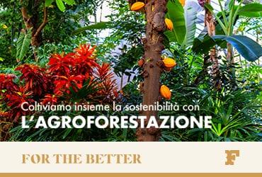 Coltiviamo la sostenibilità con l'agroforestazione