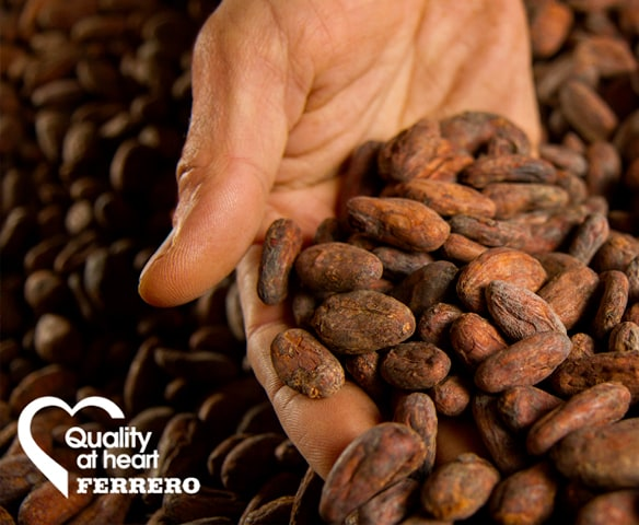 Quality at Heart: Our approach to sourcing cocoa