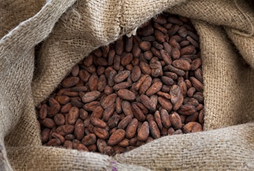 Ferrero continua ad implementare il programma di sostenibilità del cacao