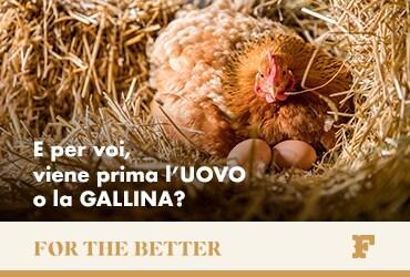 E per voi, viene prima l'uovo o la gallina?